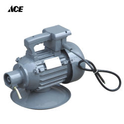 Vibratore elettrico concreto 220V del cemento di OEM/ODM