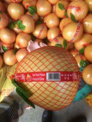 De in het groot Chinese Witte Pompelmoes Van uitstekende kwaliteit van de Pompelmoes van het Vlees van het Verse Fruit Witte/Rode Pompelmoes