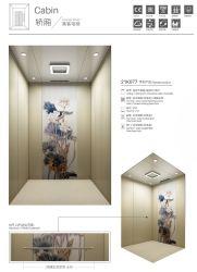 Elevatore del passeggero del ristorante della Cina di vendita della fabbrica con la piccola stanza della macchina