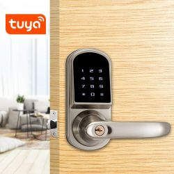 Bluetooth 전자 안전한 Deadbolt 자물쇠 디지털 안전 Tuya 패스워드 RFID 카드 키 손잡이를 가진 지능적인 자물쇠