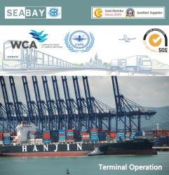 BerufsOcean Shipping From China zu Worldwide