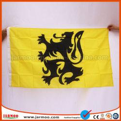 유행 다채로운 자유로운 디자인 주문 자수 깃발