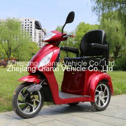 3개의 바퀴 옥외 전기 기동성 초로 차량/E 스쿠터 (St095)