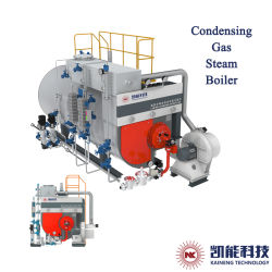 O óleo de suprimento da fábrica da caldeira e a caldeira a gás da caldeira de condensação 0,5 ton - Opcional de 20 Ton