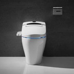 싼 가격 사기그릇 수세식 변소 전기 Bidet 지능적인 화장실