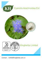 Cyanotis Arachnoidea Auszug: BetaEcdysterone (20-Hydroxy ecdysone) 5%, 90%, 95%