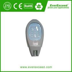 Everexceed 50W calle la luz solar System / Sistema de iluminación de la calle Independencia completa solución de la luz de la calle /