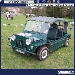 600cc 1300cc modelleert de MiniAuto van de Motor van de Benzine Moke