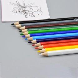 School&Officeの文房具7のインチ12PCSの六角形の柔らかさはFsc明るい木カラー鉛筆かスムーズなクレヨンカラーPencils/Lapiz De Color Pencilを導く
