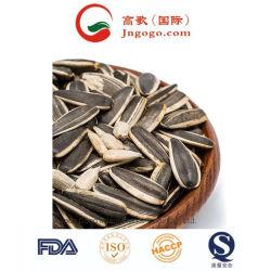 新しい穀物EUのエクスポートのための標準ヒマワリの種