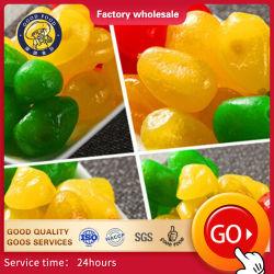 Produção profissional de grau superior Frames grandes frutos secos Golden /verde/preto/vermelho Raisin para venda