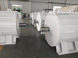 FF 500kw/200rpm/AC690V 영구 자석 발전기 (PMG/PMA/Hydro)