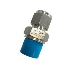 Il tipo montaggi del tubo diritto rapidamente connette l'accoppiamento idraulico flessibile dell'accessorio per tubi dell'acciaio inossidabile della tubazione del sindacato dell'acqua