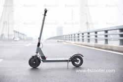 De in het groot Tribune van de Mobiliteit op T10 Elektrische Autoped