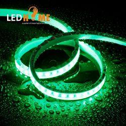 세륨 RoHS 네온 코드 빛 밧줄 3 년 보장 LED
