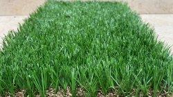 Super Suave Superior de Calidad Senior Ecológico de Jardinería Césped Artificial 60mm