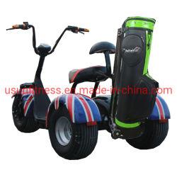 3 عجلات الكهربائية لعبة غولف عربة مغرفة دراجة كهربائية تريكسيكل لعبة غولف الكهربائية دراجة نارية سكوتر مع CE