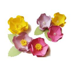 مجموعة المواد المصنوعة يدويًا من الورق التي يمكن تعديلها بنفسك من Camellia