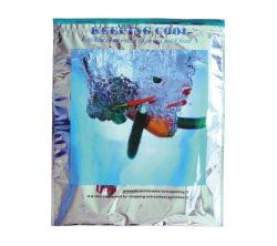 أكياس بسحّاب حقيبة تبريد للتسليم الغذائي الوسادة الحرارية المعزولة مع حقيبة بلاستيكية زيبلوك ووجبات خفيفة حراريا