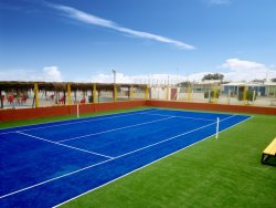 كرة مضرب عشب, عشب اصطناعيّة لأنّ كرة مضرب, عشب اصطناعيّة ([سف13و6])