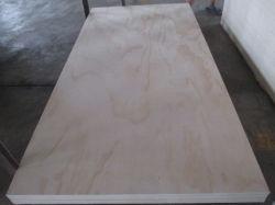 Álamos/abedul/núcleo de madera de contrachapado marino de la película enfrenta/Madera contrachapada
