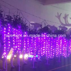 LED 등나무 결혼식 훈장이 점화 LED 커튼에 의하여 점화한다
