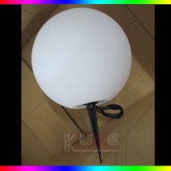 つけるリモートと防水PinライトLanscape LEDの球を差し込みなさい