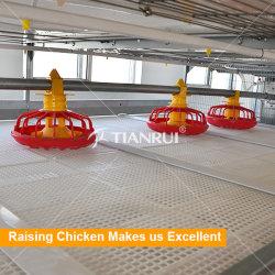 Sistema de jaulas de pollo pollo para el alimentador automático de la granja avícola