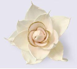 Popularmente caliente hecho a mano sola secar con difusor de flores