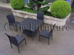 Плетеной обеденный стол и стул (GS347)