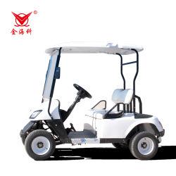 卸売鉛酸バッテリー新エネルギー電気自動車 2 シート ゴルフカートバギー