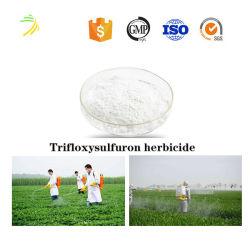 Hubicide Trifloxysulfuron 95% TC, 75% WDG에 대한 최고 품질, 공장 가격 및 판매