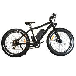 Jd-20A09 педаль оказывать давление в шинах жира электрические велосипеды для взрослых Ebikes горных районов