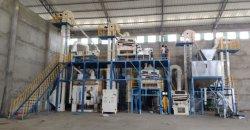 Les fèves de ligne de nettoyage du grain de l'usine de traitement de semences (5X)