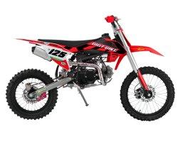 2021 Motocross 125cc Motorrad Automatik 4-Takt Dirt Bike DG 02-A