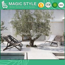 Im Freienfreizeit-Riemen-Stuhl-Garten-Textilaufenthaltsraum-Stuhl-Balkon-Falz-Stuhl-Veranda-Patio-Stuhl-Hotel-Projekt-Textilmöbel