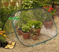Triangle petit pop up pour les légumes de serre agricole