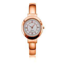 جديد أنثى سوار [هيغقوليتي] [زينك-لّوي] مادّيّة صفحة ساعة [إيبس] لون ساعة ([ج-ل014])