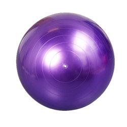 La meilleure qualité de l'équipement de sports yoga Ball