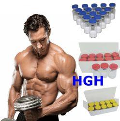 191AA (Golden GH) 10iu por vial Somatropin ganar músculo para máquina de musculación CAS 12629-01-5