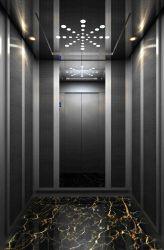 Villa de los pasajeros de transporte de mercancías de China panorámicas alquiler de bienes elevador de elevación casa residencial