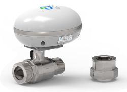 Intelligenter Wasser-Controller für Ausgangsim garten arbeitenbewässerung