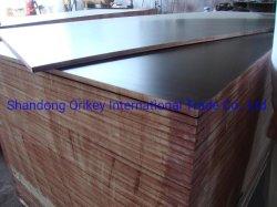 15-18mm Film enfrenta el mercado para la construcción de contrachapado de madera