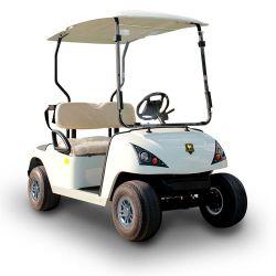 CE сертифицирована 2-местный легкие двухместные коляски (ГД-C2) для игры в гольф