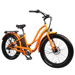 2020 حارّ خداع الصين رخيصة [750و] سمين إطار [26ينش] درّاجة كهربائيّة