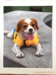 Pittura a olio su ordine del ritratto dell'animale domestico di un cane su tela di canapa