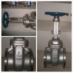"""API600/DIN/JIS 600lb 14 de """" Konische Sluisdeur van de Klep van de Poort van het Koolstofstaal van het Tandwiel CF8m Van een flens voorzien (Z41W-14-600LB)"""