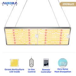 卸し売り完全なスペクトルLED高い湾の同価の照明灯のプラントはランプを育てる