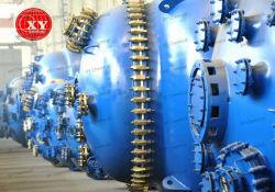 Aço inoxidável vitrificados reator de mistura química