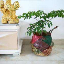 Ручной работы из бамбука бункер сеялки многофункциональный телефон соломы пэтчворк плетеной плетеной морские водоросли сад Flowerpot сеялки
